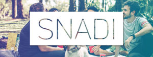 Snadin logo