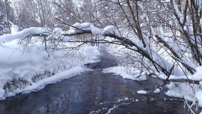 Kevättulva joella