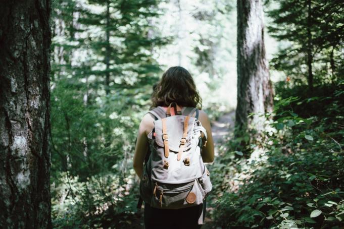 Kävely metsässä